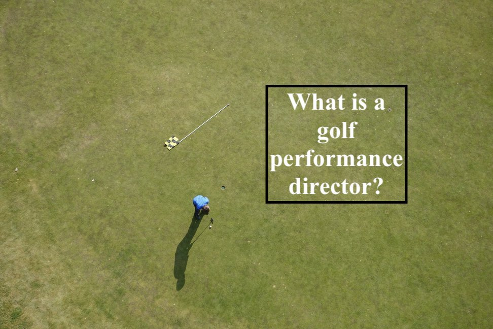 Golf performance director