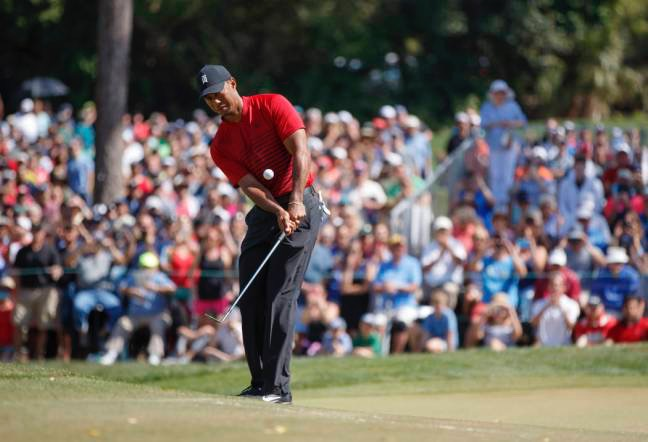 Golf chipping tiger woods