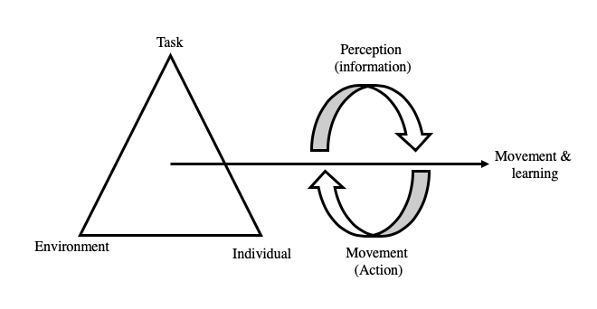 constraints theory model showing task, individual and environmental factors and their effect on the movement produced.