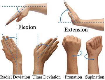 wrist golf swing mechanics